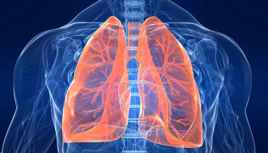 Συνεργασία πνευμονολόγων και φαρμακοποιών