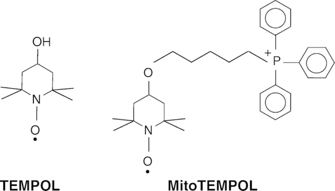Tempol: Νέο πειραματικό φάρμακο για την αντιμετώπιση της Covid-19